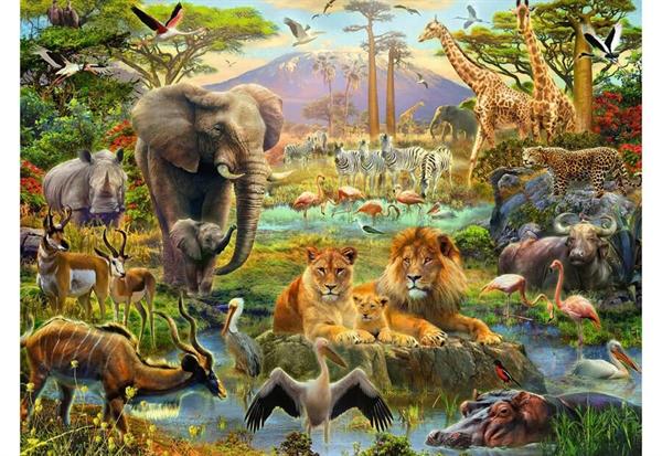 Image of   Animals of the Savanna