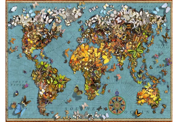 Image of   World of Butterflies