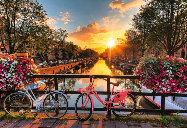 Image of   Bicycles in Amsterdam