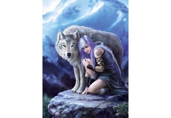 Image of   Anne Stokes Protector