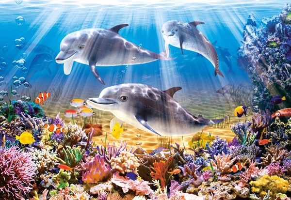 Image of   Dolphins Underwater