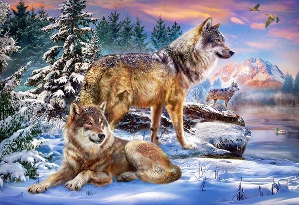 Image of   Wolfish Wonderland