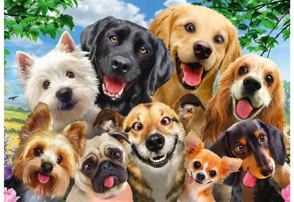 Image of   Dog Selfie