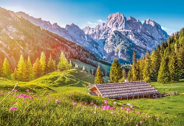 Image of   Summer in the Alps