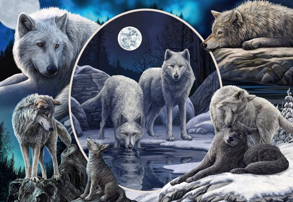 Image of   Magnificent Wolves